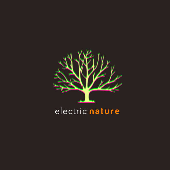 Electric Nature logo